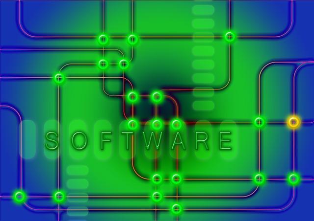 Netzwerkmanager für MS Windows Server SGD