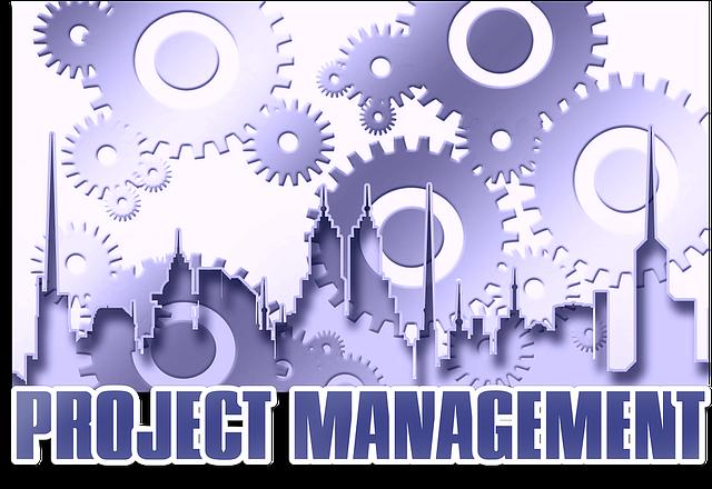 Projektleiter werde mit der Projektmanagement Ausbildung der SGD